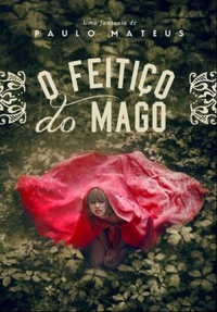 O feitiço do mago