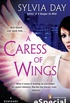 Uma car�cia de asas - A caress of wings